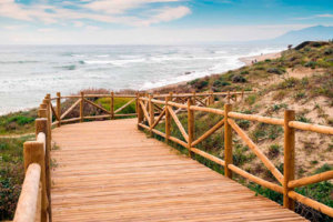 Playa de Artola